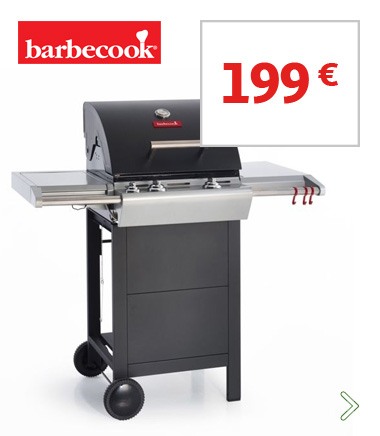 Barbecook au gaz